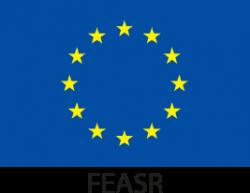 Logo FEASR